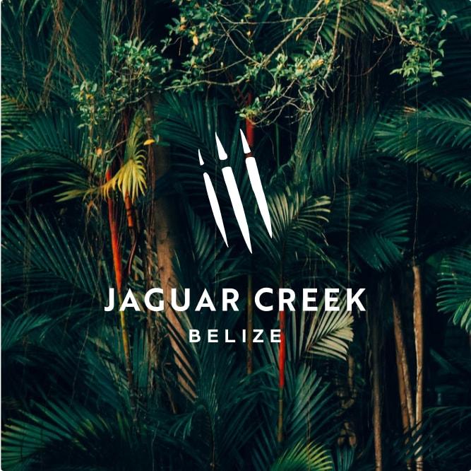 Brave Factor Jaguar Creek Climate & Environment Nonprofits